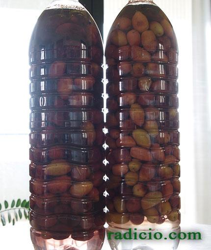 Ελιές στο μπουκάλι